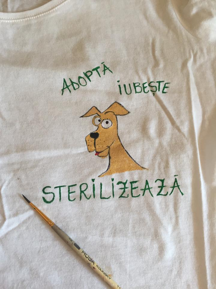 Onesti-Kastra-Vorbereitung03